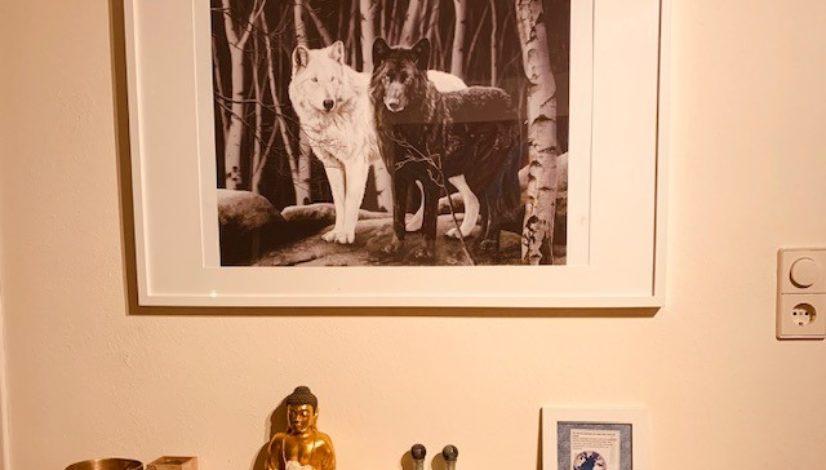 blog Creatief in Coachen | het verhaal over de witte en zwarte wolf