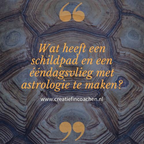 Creatief in Coachen   blog   astrologie
